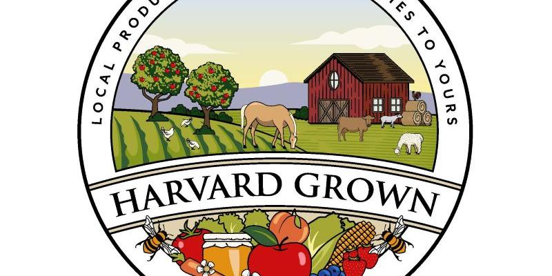 Harvard Grown